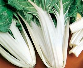 Acelga verde de talos brancos 10g sementes