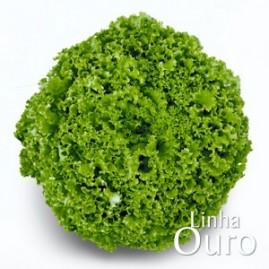 Alface Ariel tipo Crespa 5.000 sementes peletizadas