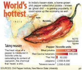 Pimenta Bhut Jolokia (pimenta do livro dos recordes) 500 sementes