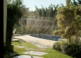 Kit Sementes de Grama Bermuda 250g Mais Irrigação para 50 m²