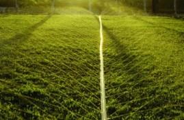 Mangueira Santeno 2 de Irrigação Microperfurada a laser 100m