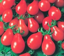 Tomate pêra vermelho 2g aproximadamente 1020 sementes