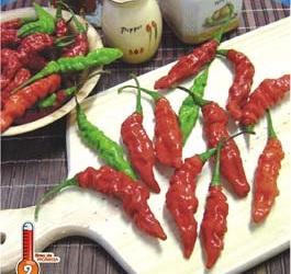 Pimenta Murupi 2,5g (sementes)